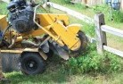 Byng Stump grinding services 3